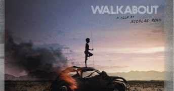 Criterion Discovery: Walkabout