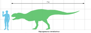 Majungasaurus_scale
