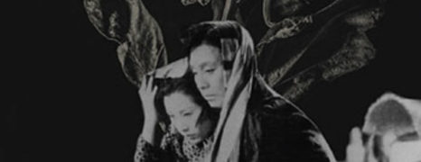 Criterion Discovery: The Story of the Last Chrysanthemum